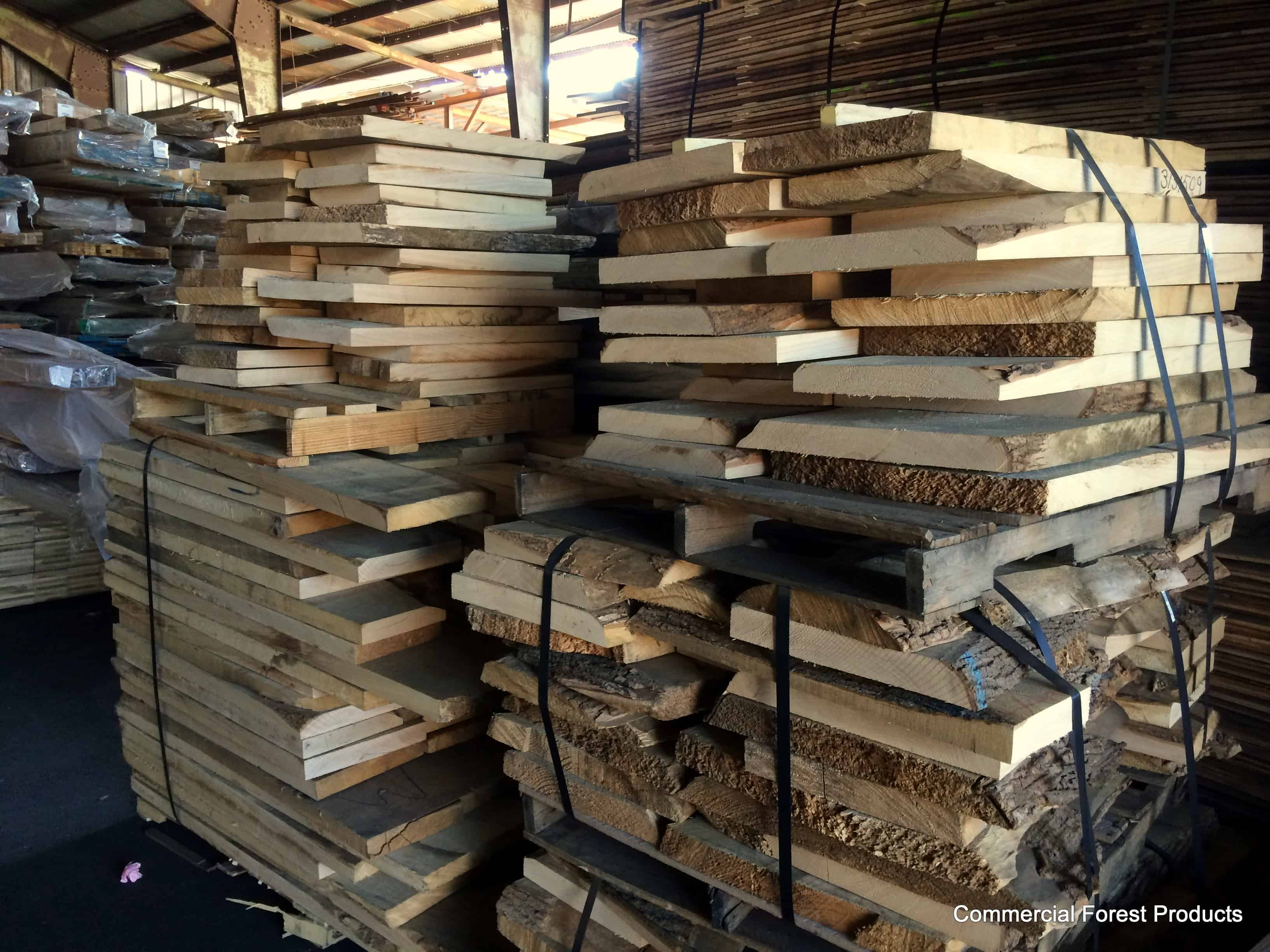 Swamp Ash Wood Definitive Guide Commercial Forest
